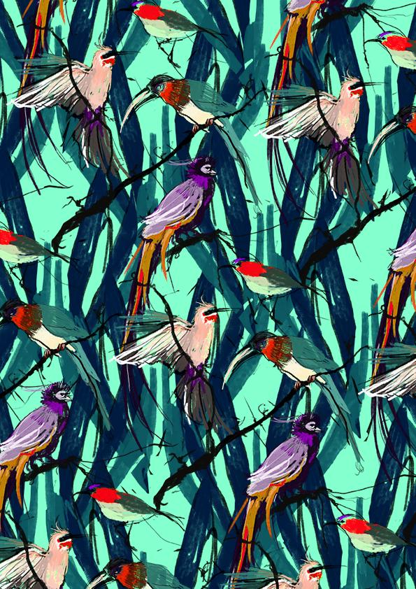 trop_birds2lowres
